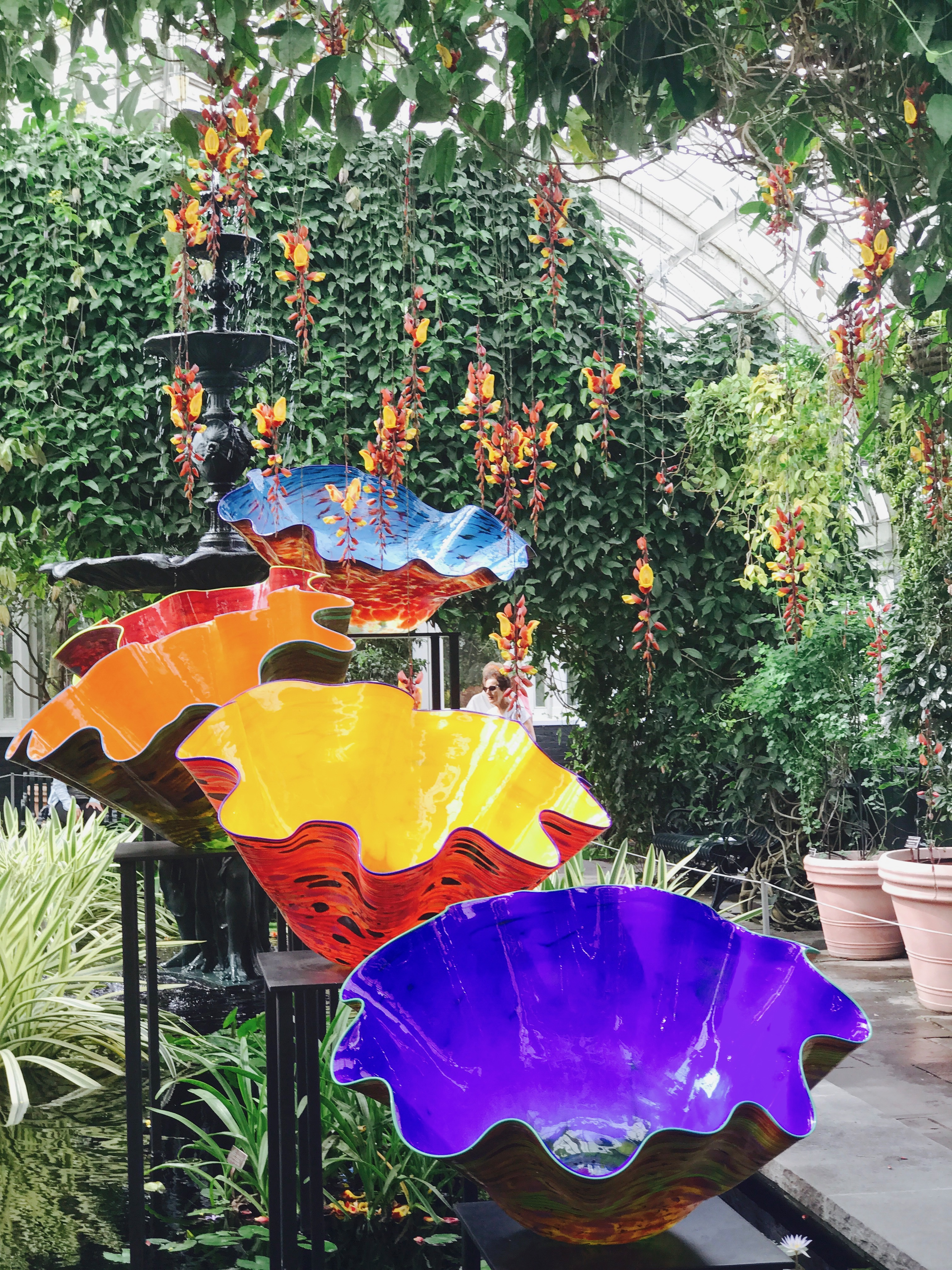 Last June I Wrote A Post Titled When Art And Nature Convene About My  Pre Lunch Visit To The Chihuly Exhibit At The Botanical Gardens.